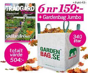Allt om Trädgård - 6 nr + praktisk gardenbag för endast 159 kr Återbäring