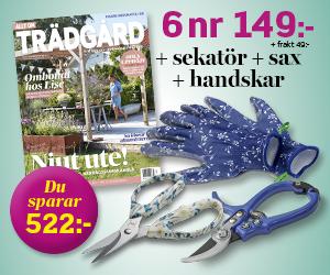 Allt om Trädgård - 6 nr + trädgårdshandskar, sekatör & multisax för endast 149 kr Rabatt / Återbäring