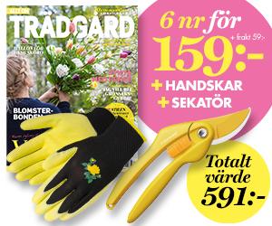 6 nr av Allt om Trädgård för endast 159 kr + sekatör från Fiskars + trädgårdshandskar från Tegera Återbäring