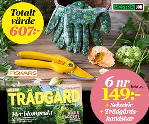 Allt om Trädgård + trädgårdshandskar & sekatör Rabatt / Återbäring