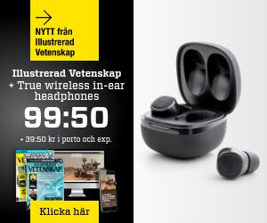 Illustrerad Vetenskap + True Wireless in-ear Återbäring